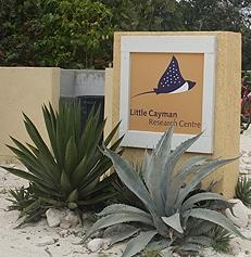 CCMI-on-Little-Cayman-(Read-Only).jpg