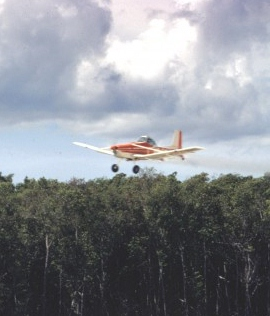 Cessna-in-mangrove-1-700x466.jpg