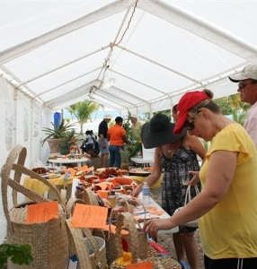 Little Cayman  Agriculture Show-Exhibit 082 (286x300).jpg