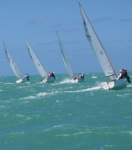 Race Cayman J22s racing upwind (264x300).jpg