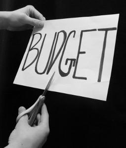 final-budget-cut (255x300).jpg