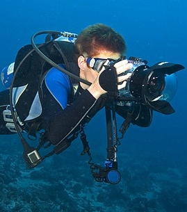 underwater-photographer-jobs.jpg